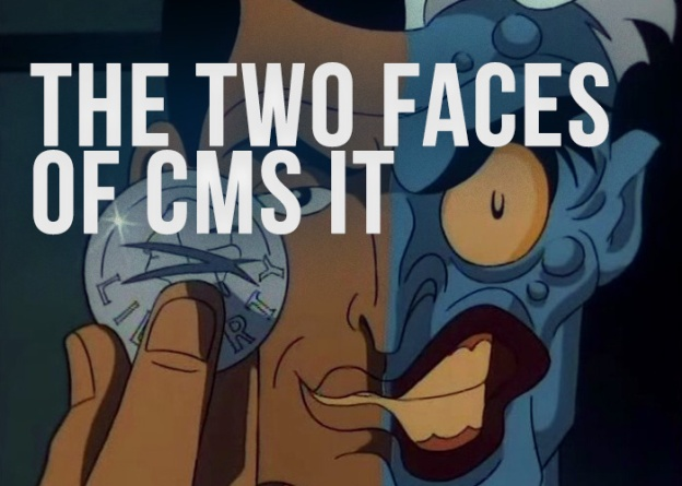 Two Faces of CMS IT